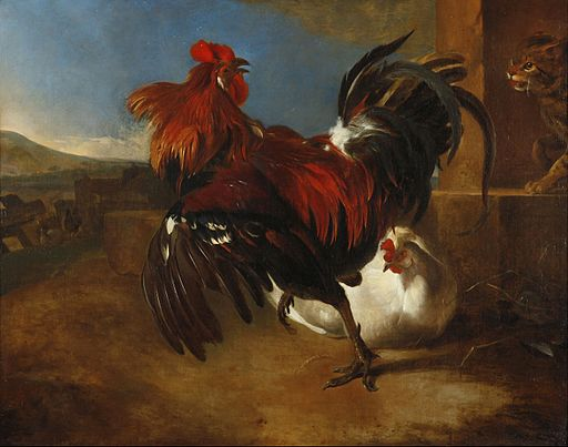 Melchior_De_Hondecoeter_-_Poultry-yard_with_angered_cock_-_Google_Art_Project